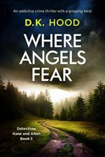 Where Angels Fear Book Cover
